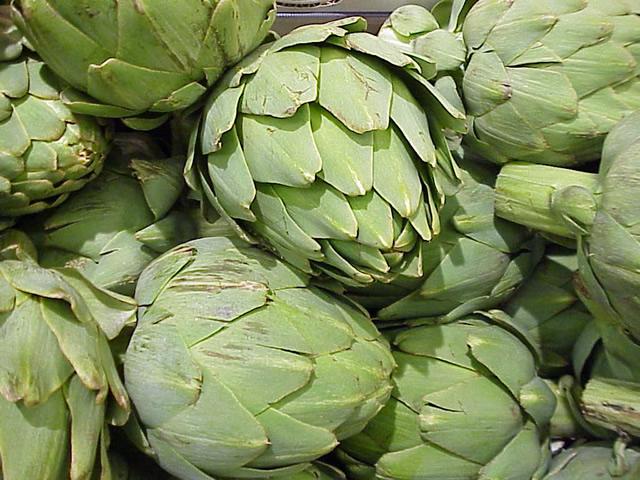 alcachofa fruto