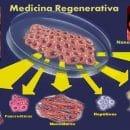 Medicina regenerativa esperanza para el mundo